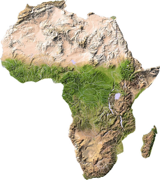 Ribi I Rasteniya Ot Afrika Blgarska Akvariumna Enciklopediya